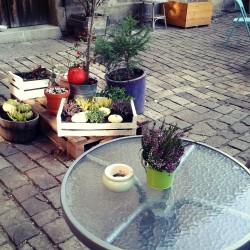 zahradka2